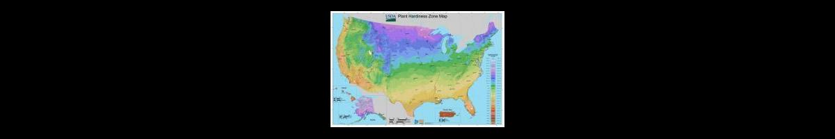 What You Need to Know About Plant Hardiness Zones