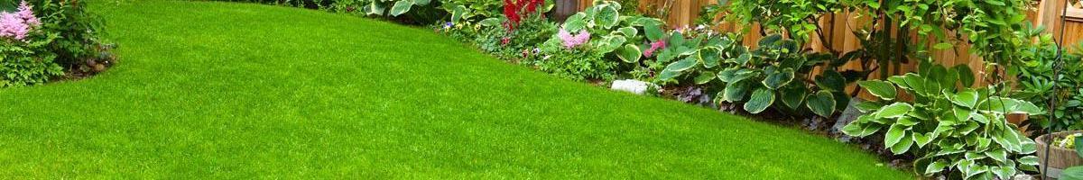 Keeping Your Lawn Grass Where it Belongs
