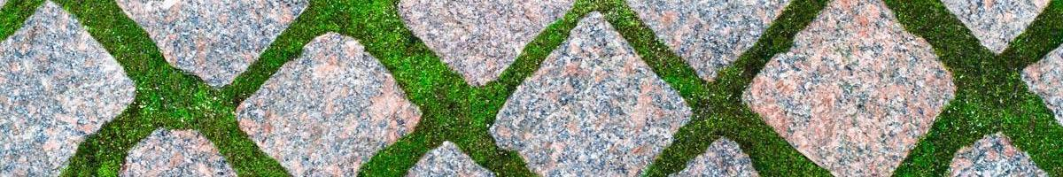 The Growing Popularity of Grass Driveways