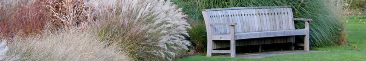 The Use of Ornamental Grass in the Landscape and Garden
