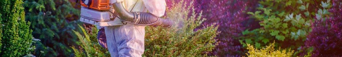What Pest Control Businesses are Doing to Minimize Harm