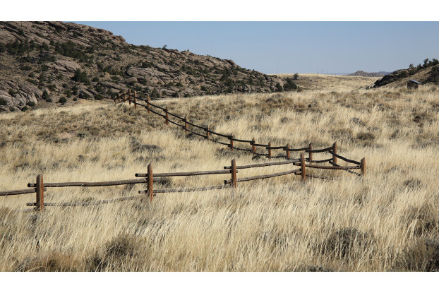 Intermountain West Erosion Control Blend