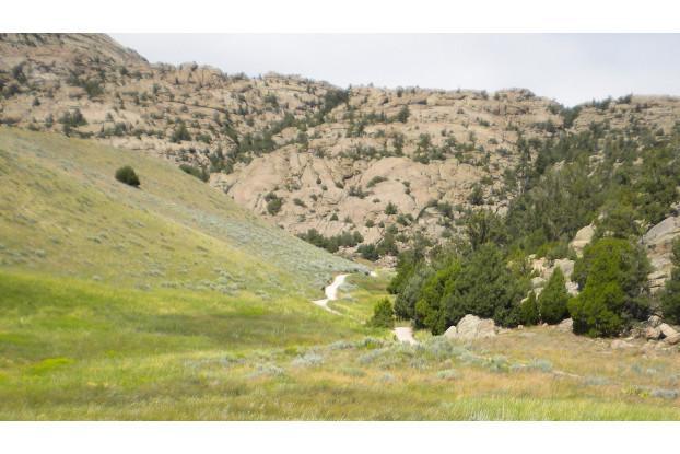 Southwest Semi-Arid Steppe Erosion Control Blend