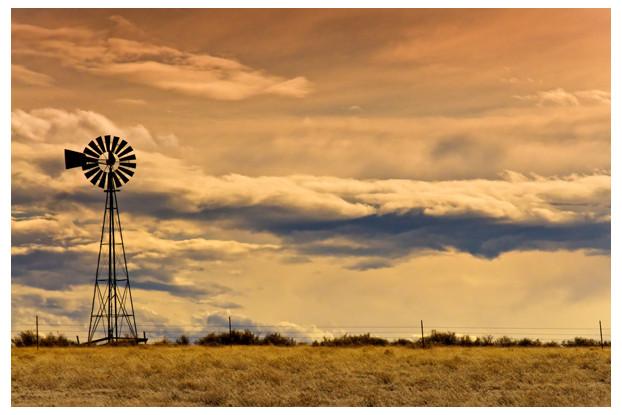 pasture seed,great plains,drylands,pasture grass,Great Plains Pasture Seed,Dryland Pasture Blends,Great Plains Planting Region