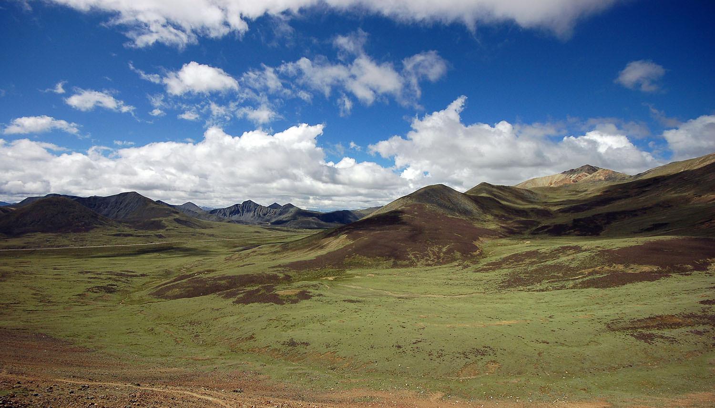 Southwest Desert Erosion Control Blend Nature S Seed