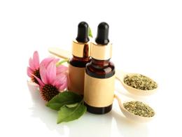 Echinacea medicine