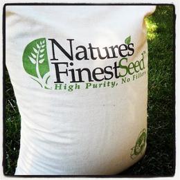 grass bag image2