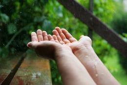 hands catching rain