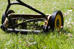 reel mower cutting grass