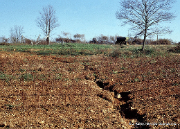 rill erosion by Soil Science @ NC State