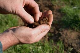 testing soil type
